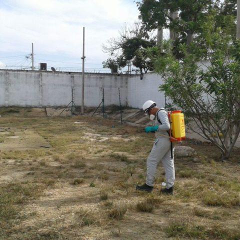 herbicida1